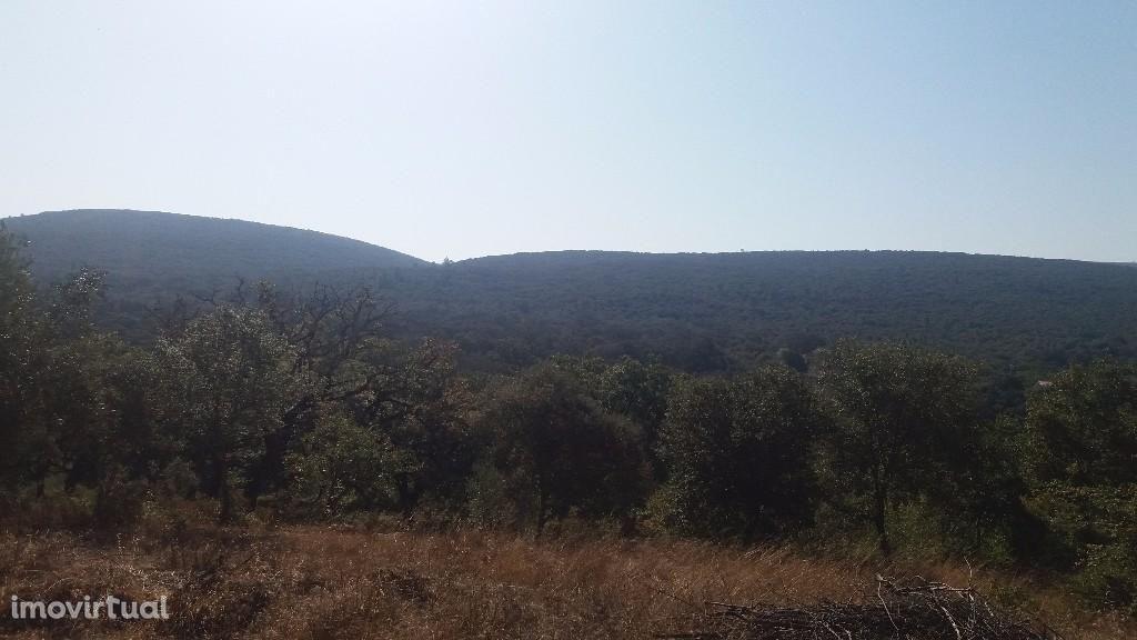 Terreno com vista maravilhosa entre Alvaiázere e Ansião