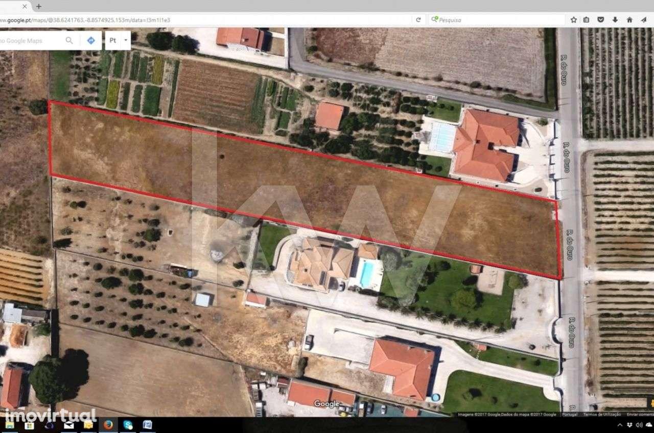rua do ouro lisboa mapa Terreno Rústico   Rua do Ouro   Pinhal Novo   Imovirtual rua do ouro lisboa mapa