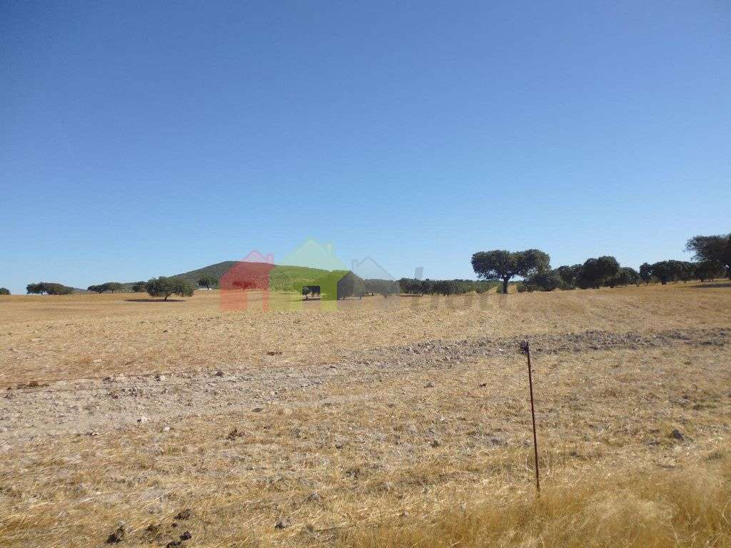 Quintas e herdades para comprar, Vila Verde de Ficalho, Beja - Foto 22