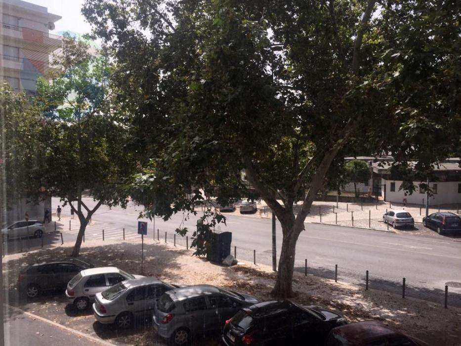 Apartamento para arrendar, Lumiar, Lisboa - Foto 5