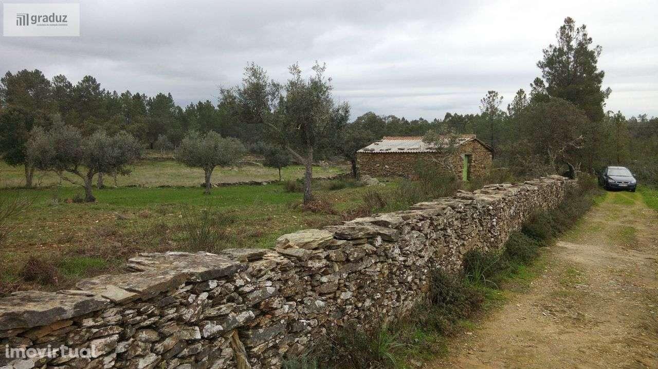 Quintas e herdades para comprar, Benquerenças, Castelo Branco - Foto 3
