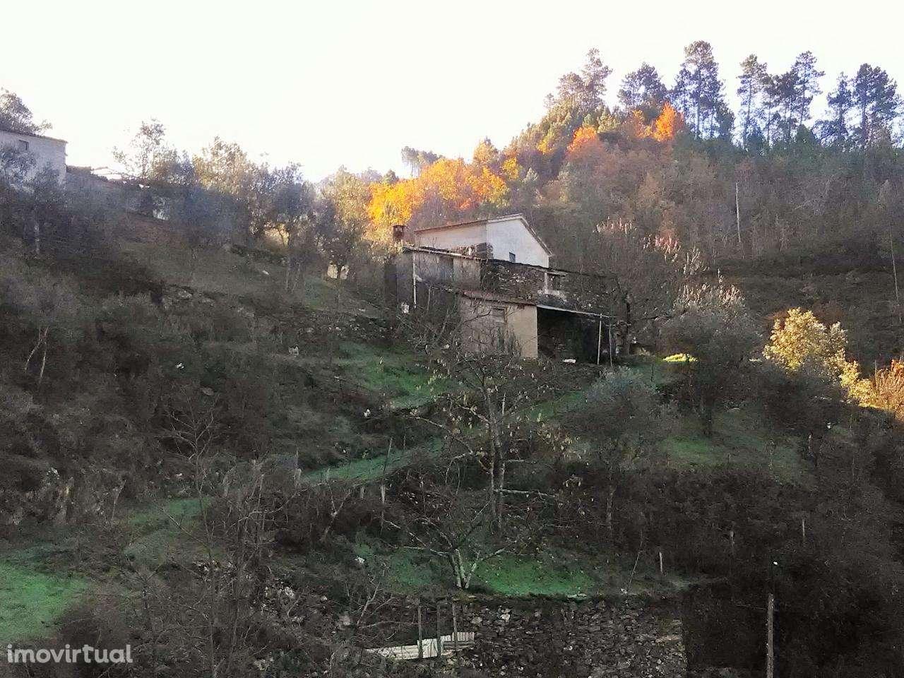 Quintas e herdades para comprar, Folques, Arganil, Coimbra - Foto 1