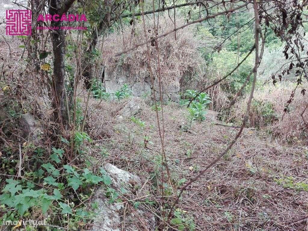 Quintas e herdades para comprar, Caires, Amares, Braga - Foto 4