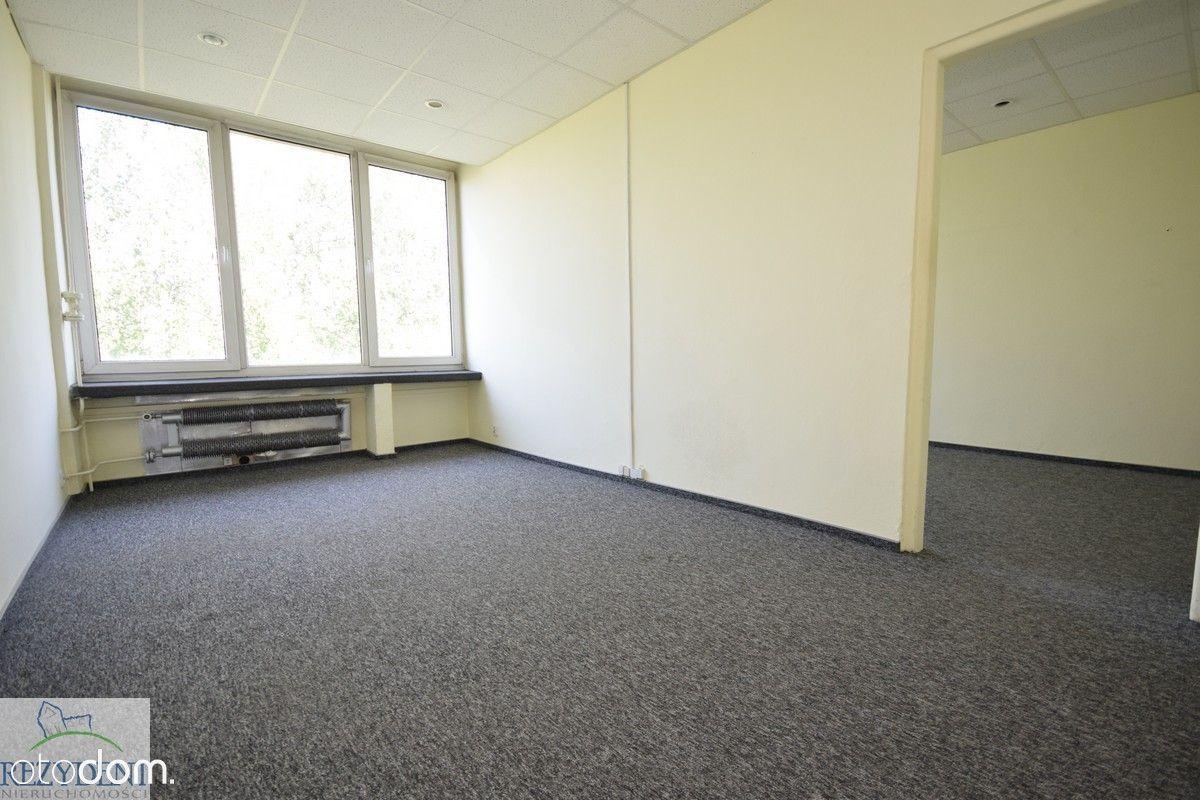 Lokal użytkowy, 48 m², Katowice