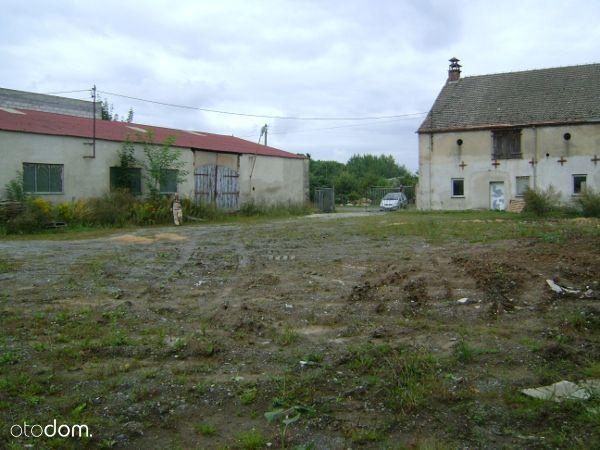 Lokal użytkowy, 1 543 m², Sulechów