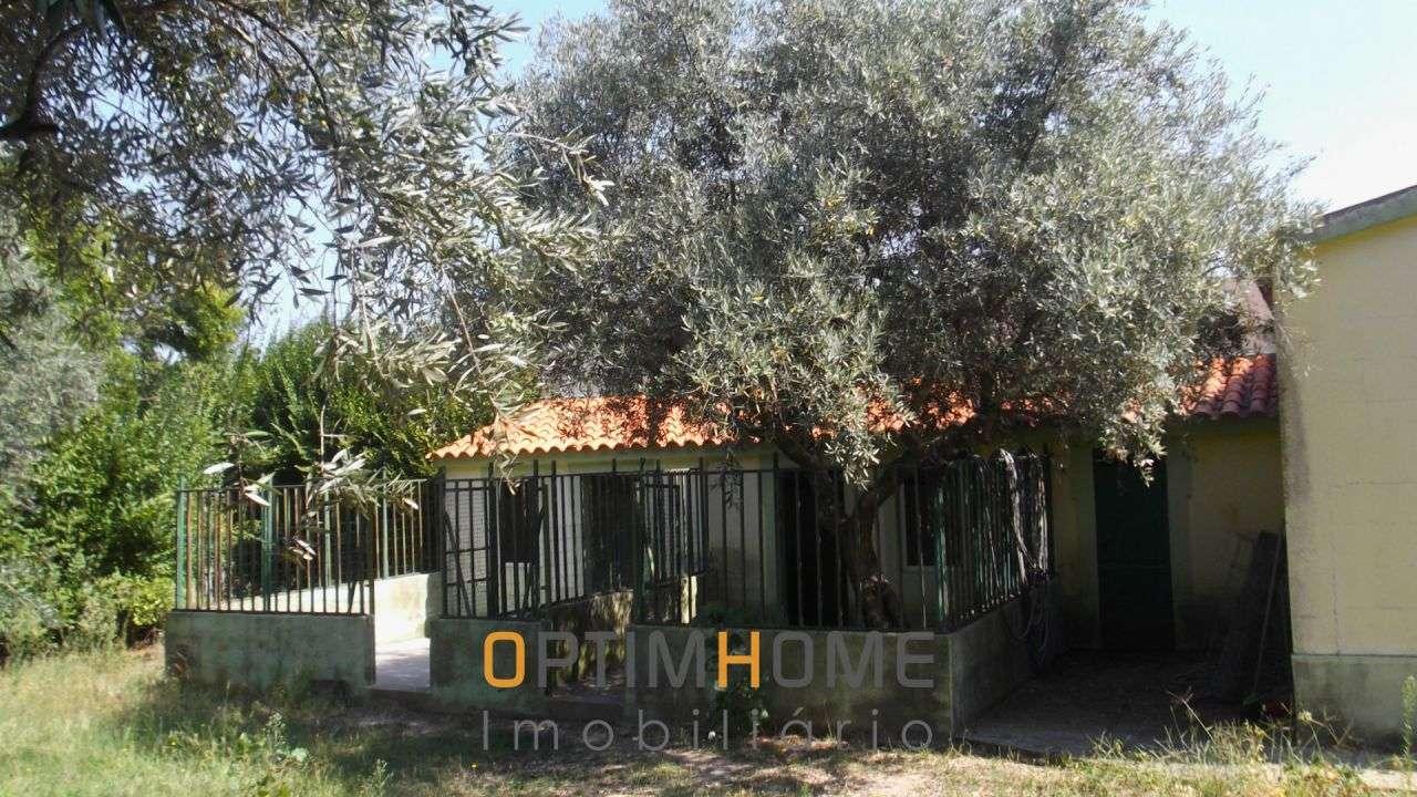 Quintas e herdades para comprar, Caria, Belmonte, Castelo Branco - Foto 26