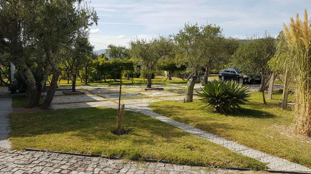 Quintas e herdades para comprar, Anreade e São Romão de Aregos, Resende, Viseu - Foto 10