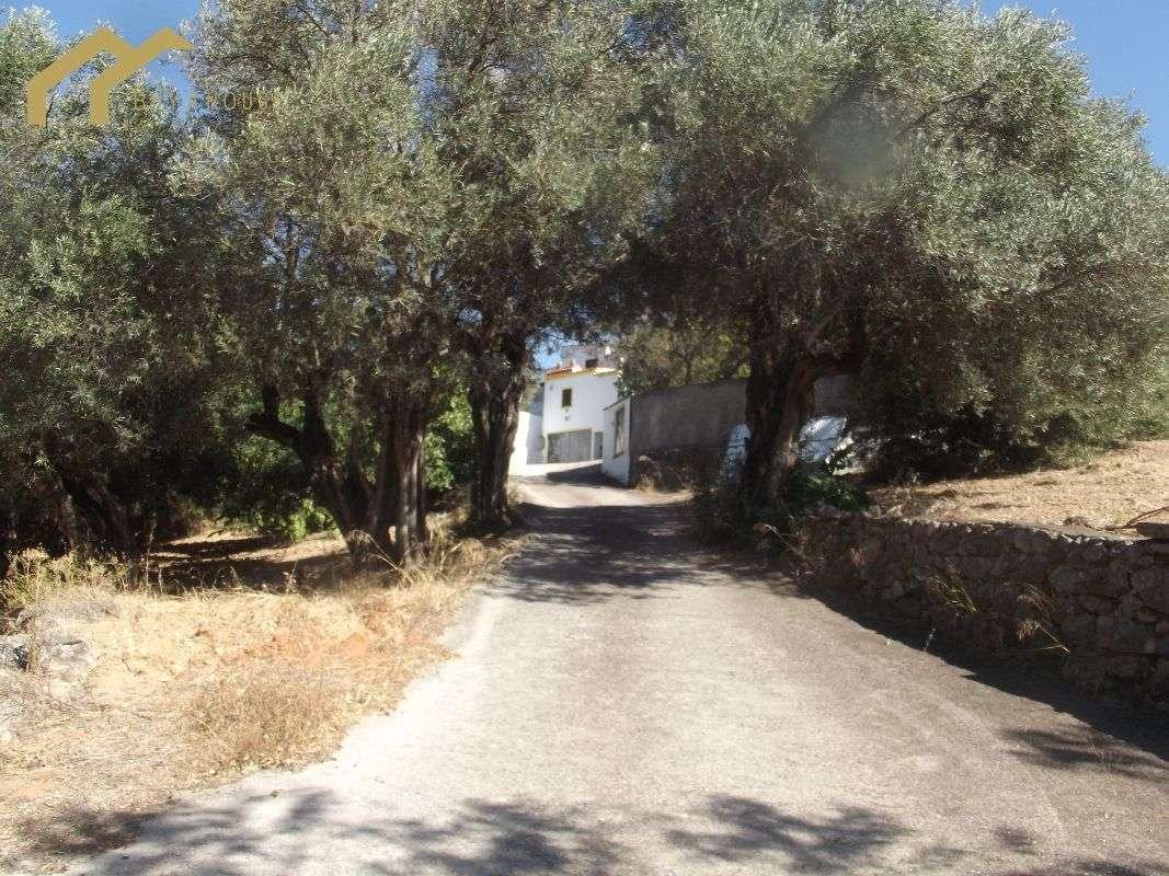 Quintas e herdades para comprar, Almancil, Loulé, Faro - Foto 20