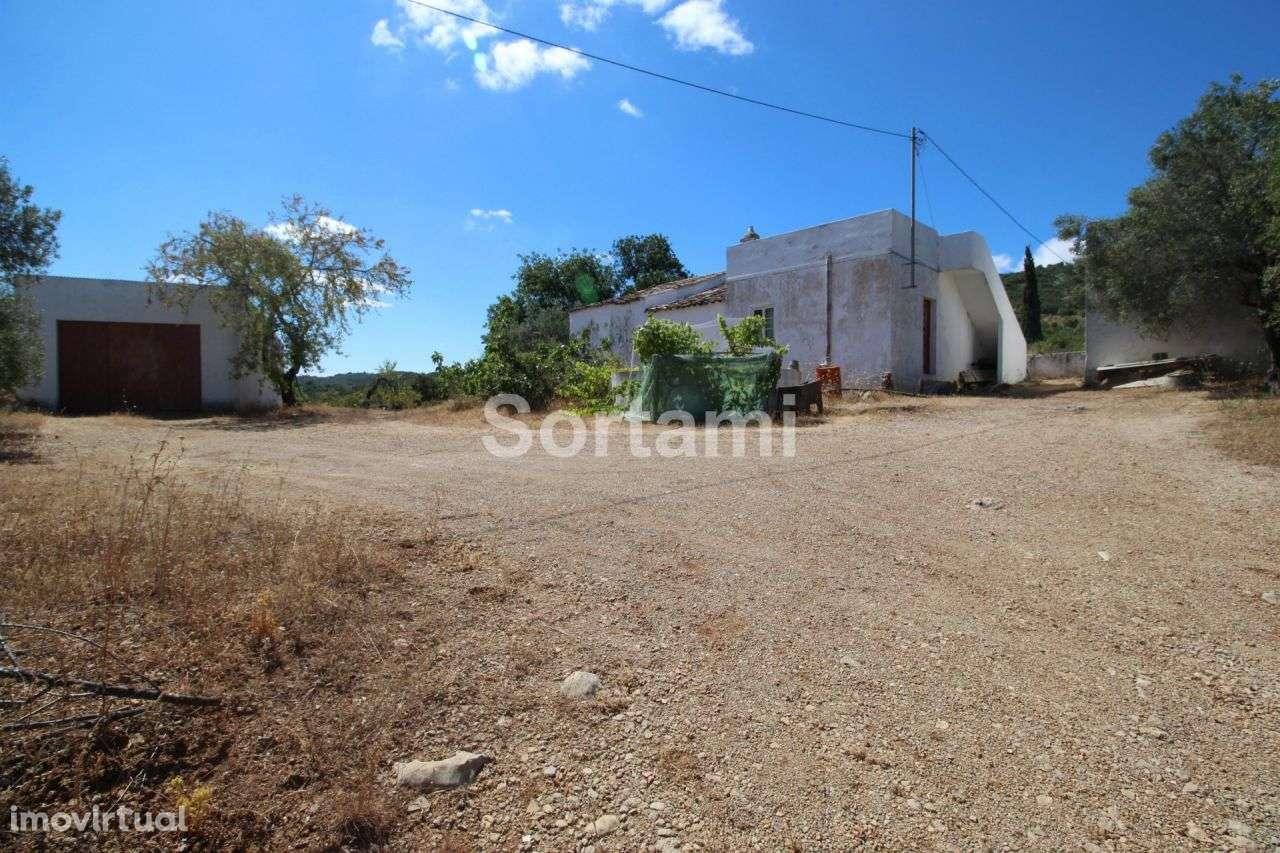 Terreno para comprar, Conceição e Estoi, Faro - Foto 3