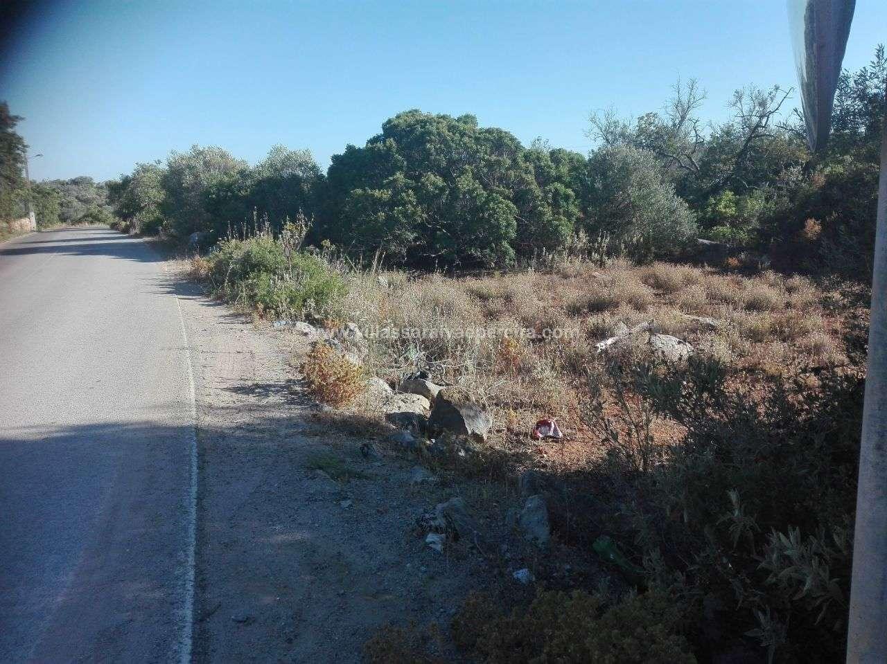 Terreno para comprar, Moncarapacho e Fuseta, Olhão, Faro - Foto 3