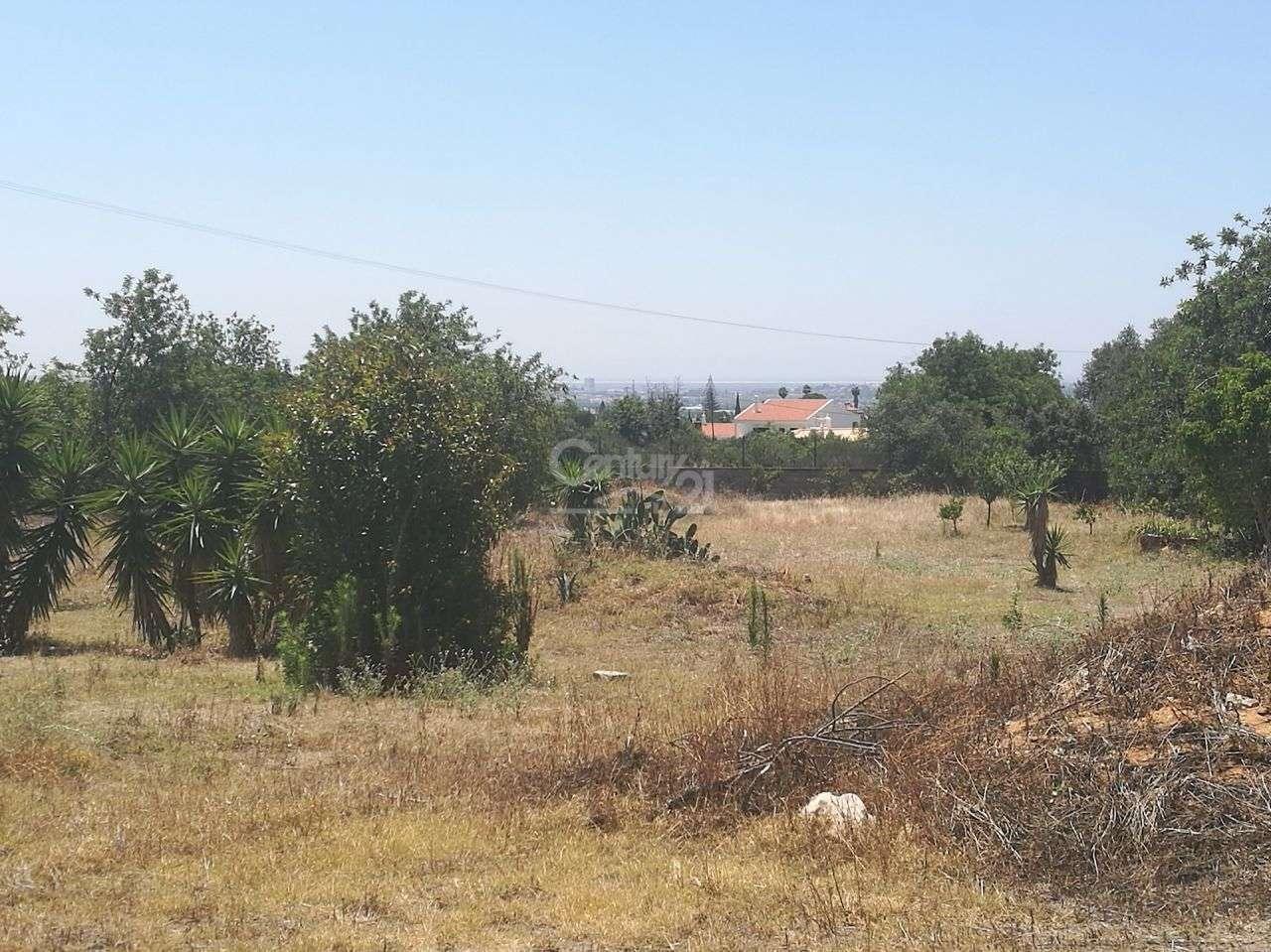 Terreno para comprar, Santa Bárbara de Nexe, Faro - Foto 2