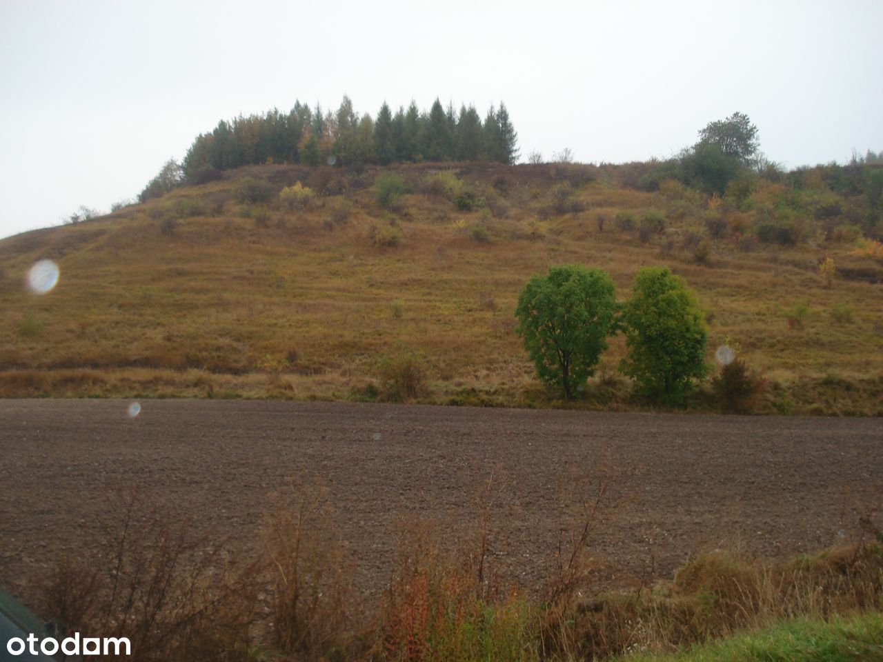 Działka rolno-budowlana, 12900m2, Pełczyska