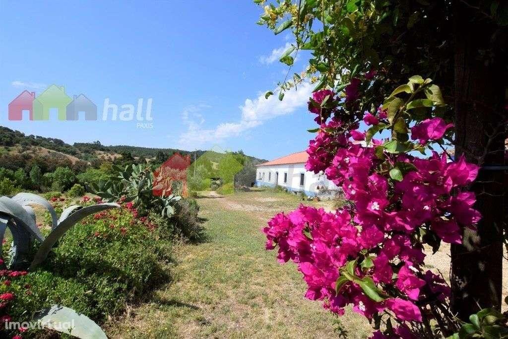 Quintas e herdades para comprar, Garvão e Santa Luzia, Ourique, Beja - Foto 1