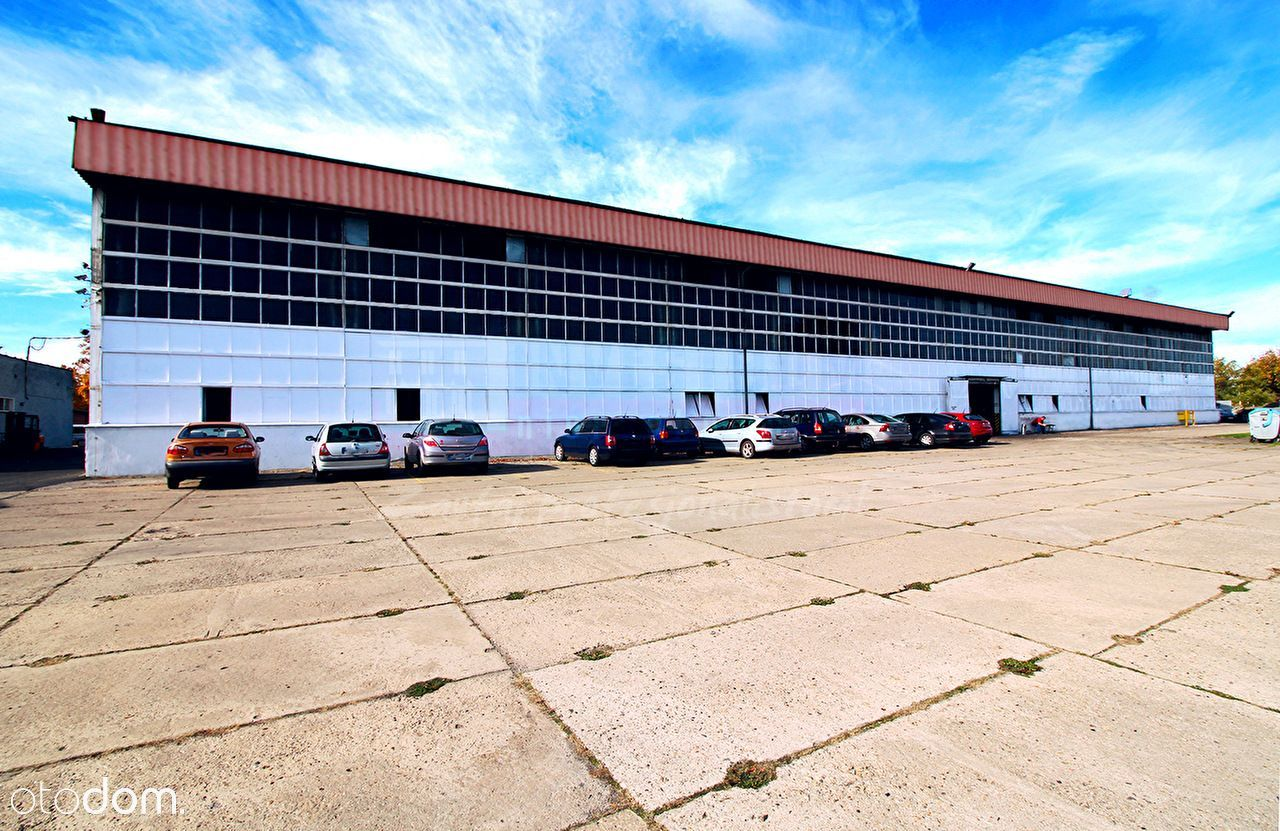 Lokal użytkowy, 16 402 m², Olesno