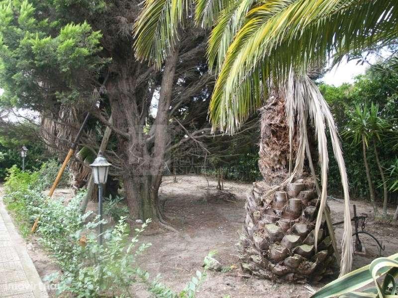 Terreno para comprar, Pinhal Novo, Setúbal - Foto 53
