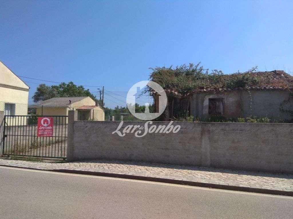 Terreno para comprar, Pereira, Coimbra - Foto 2
