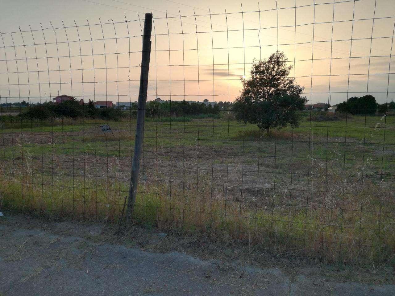 Terreno para comprar, Marinhais, Santarém - Foto 2