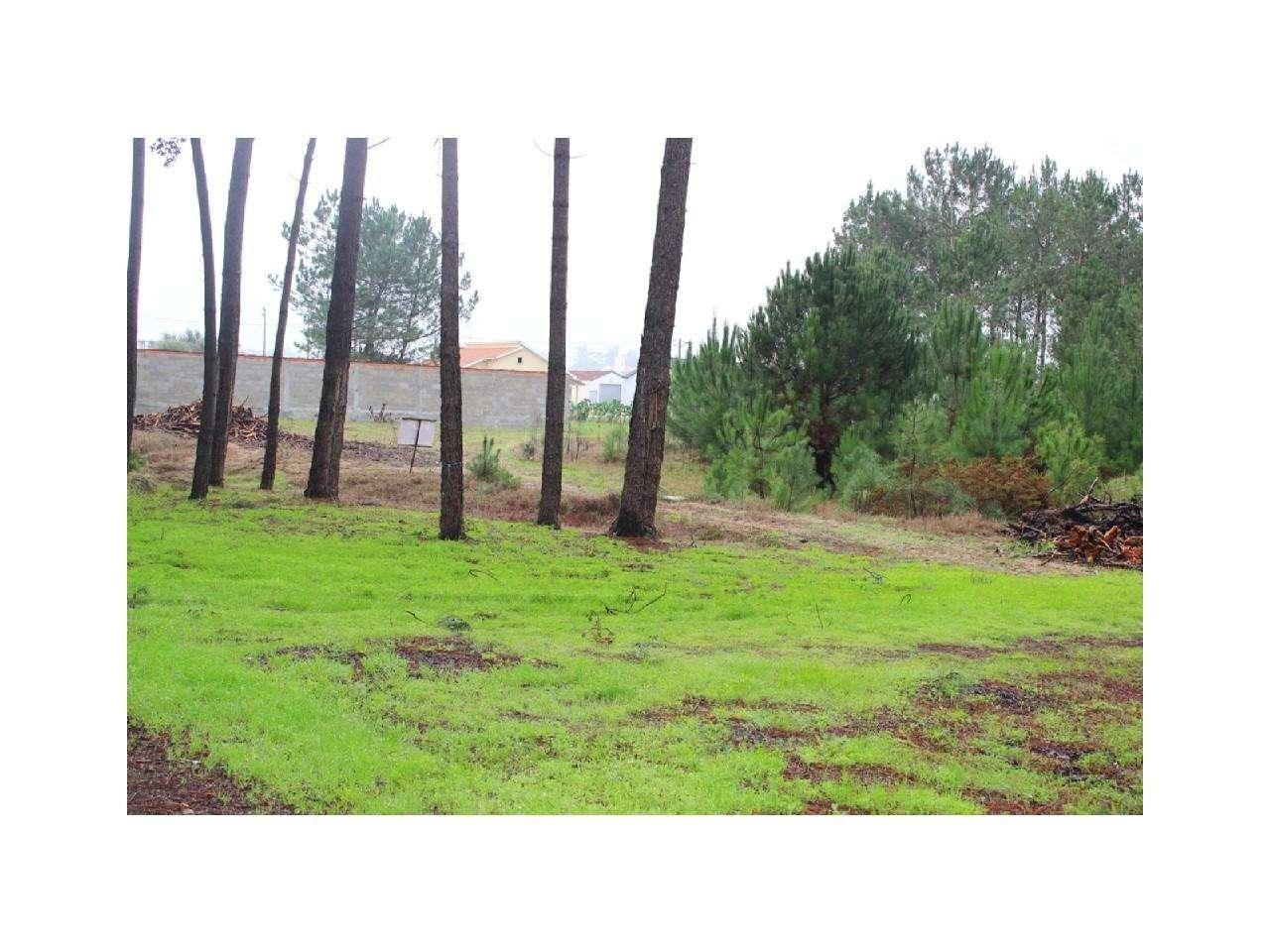 Terreno para comprar, Monte Redondo e Carreira, Leiria - Foto 1