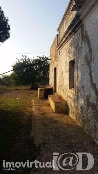 Quintas e herdades para comprar, Santa Bárbara de Nexe, Faro - Foto 3