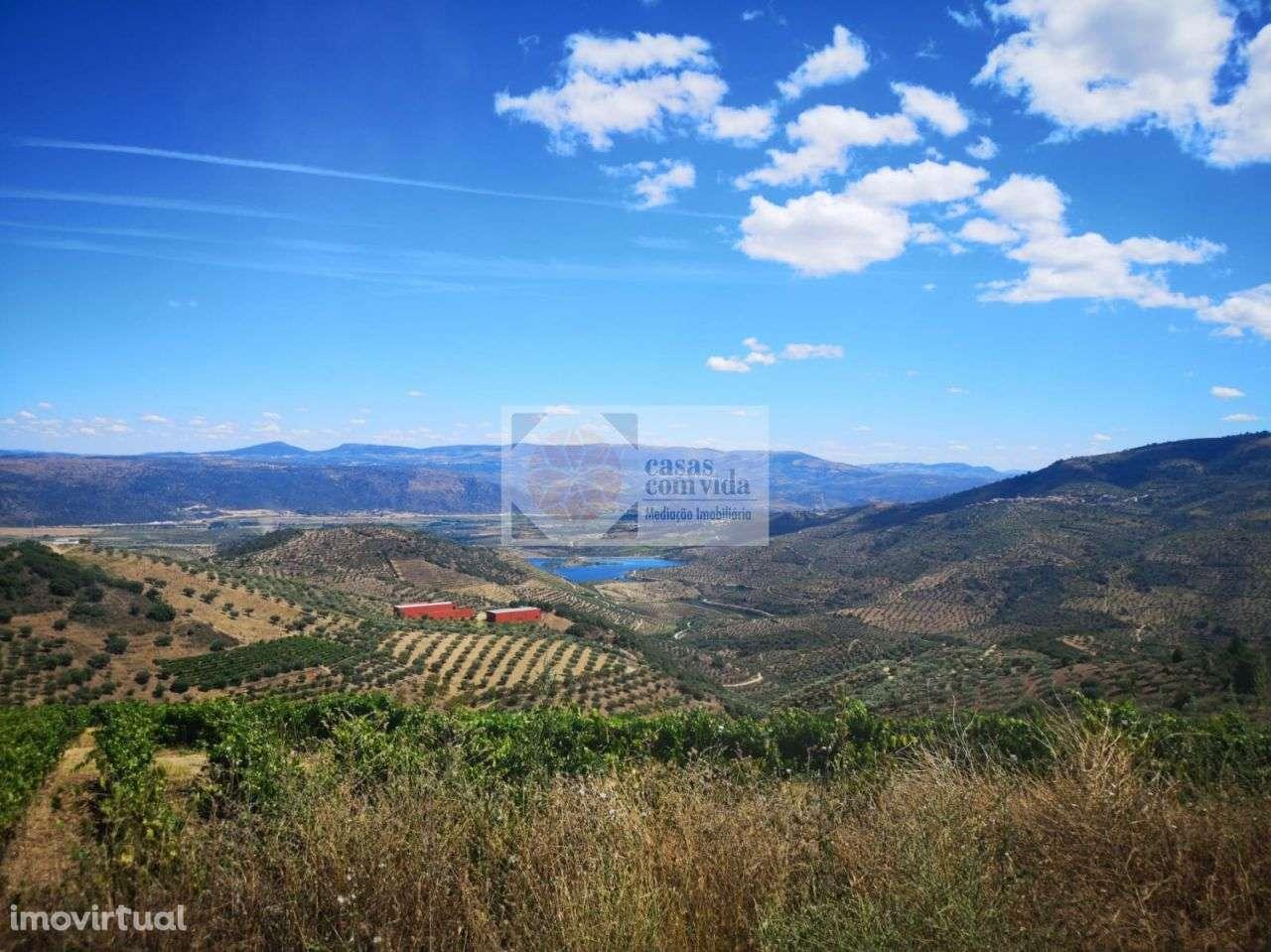 Quintas e herdades para comprar, Seixo de Manhoses, Vila Flor, Bragança - Foto 20
