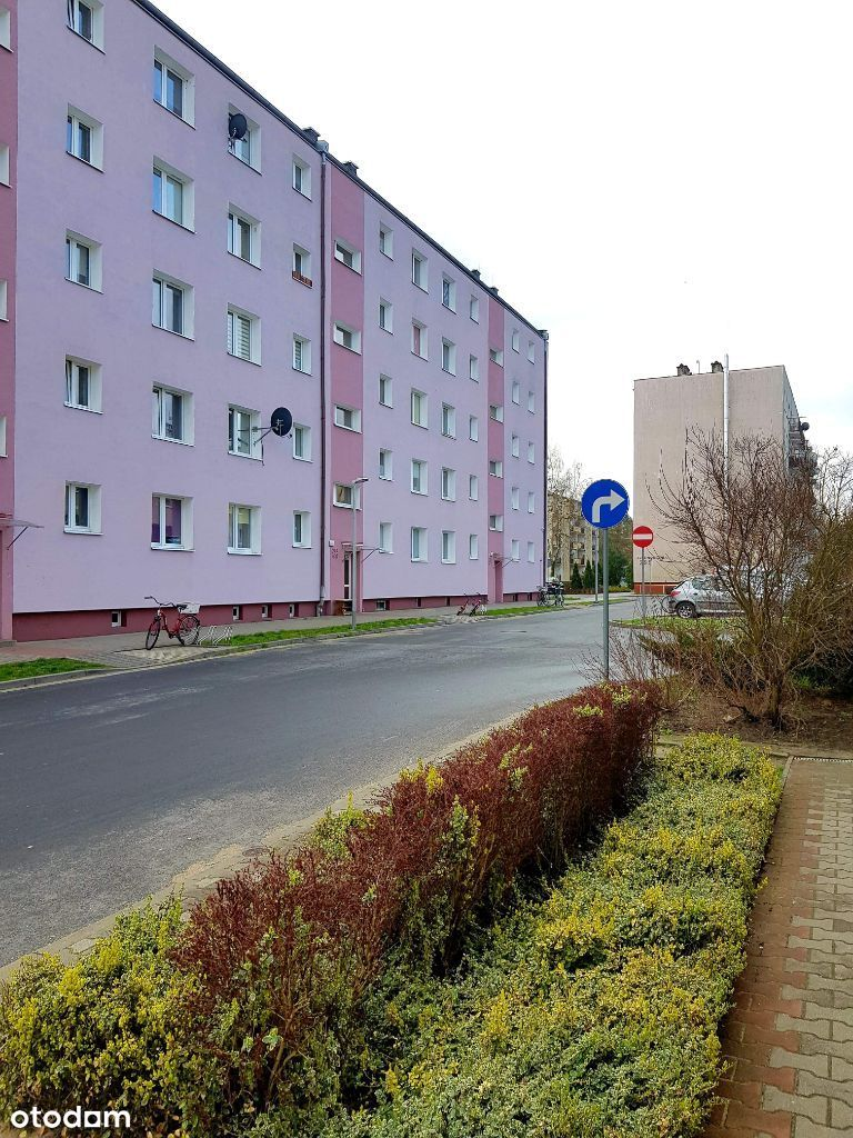 Biedrusko, Układ Niezależny