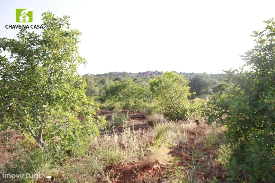 Terreno para comprar, Moncarapacho e Fuseta, Faro - Foto 12