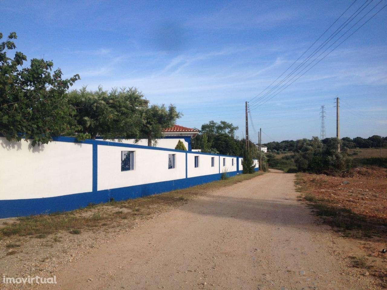 Moradia para comprar, Cartaxo e Vale da Pinta, Santarém - Foto 49