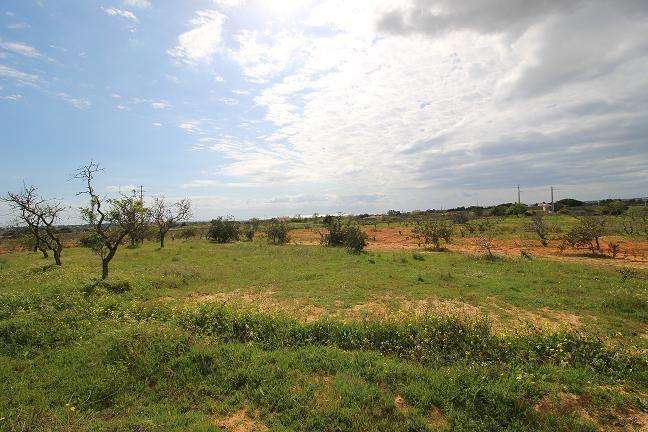 Terreno para comprar, Alcantarilha e Pêra, Silves, Faro - Foto 9