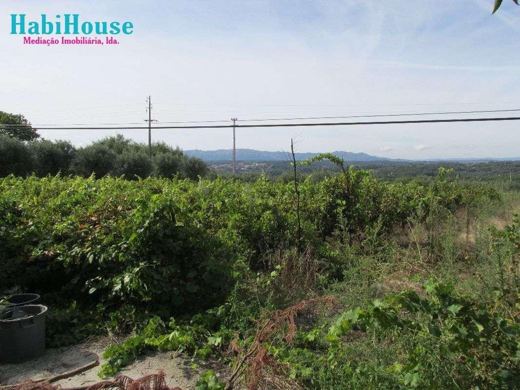 Quintas e herdades para comprar, Silgueiros, Viseu - Foto 13
