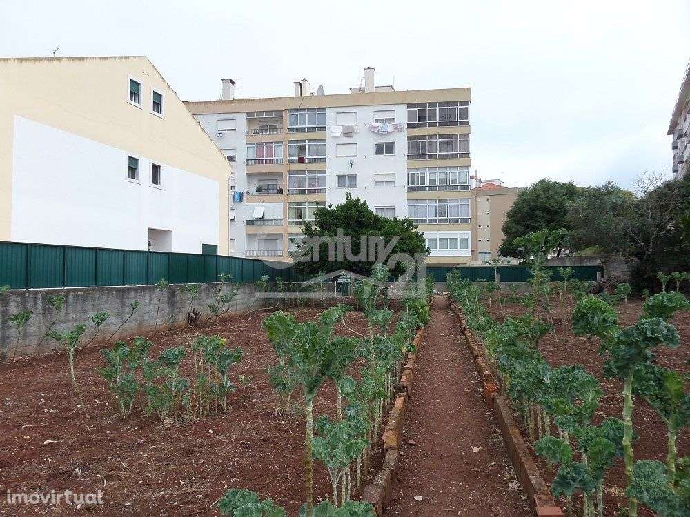 Quintas e herdades para comprar, Massamá e Monte Abraão, Lisboa - Foto 6