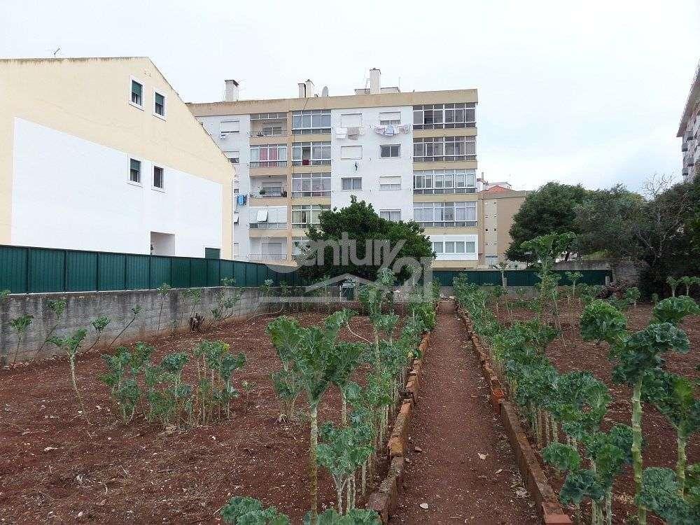 Quintas e herdades para comprar, Massamá e Monte Abraão, Sintra, Lisboa - Foto 6