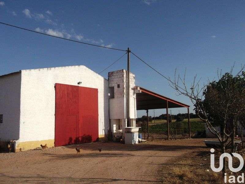 Terreno para comprar, Fronteira - Foto 3