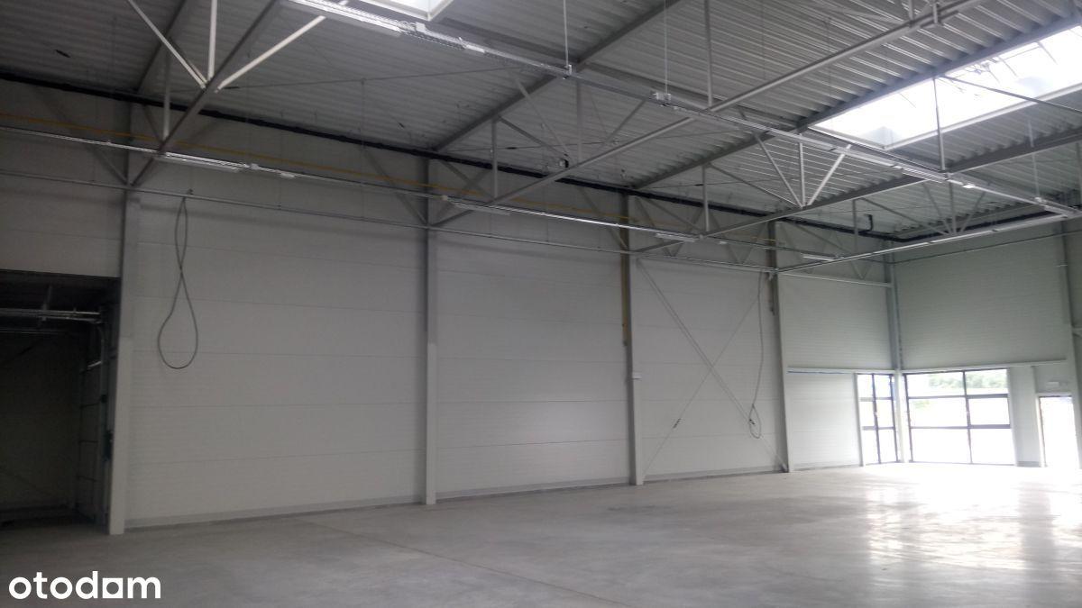 Hala/Magazyn, 1 400 m², Gliwice