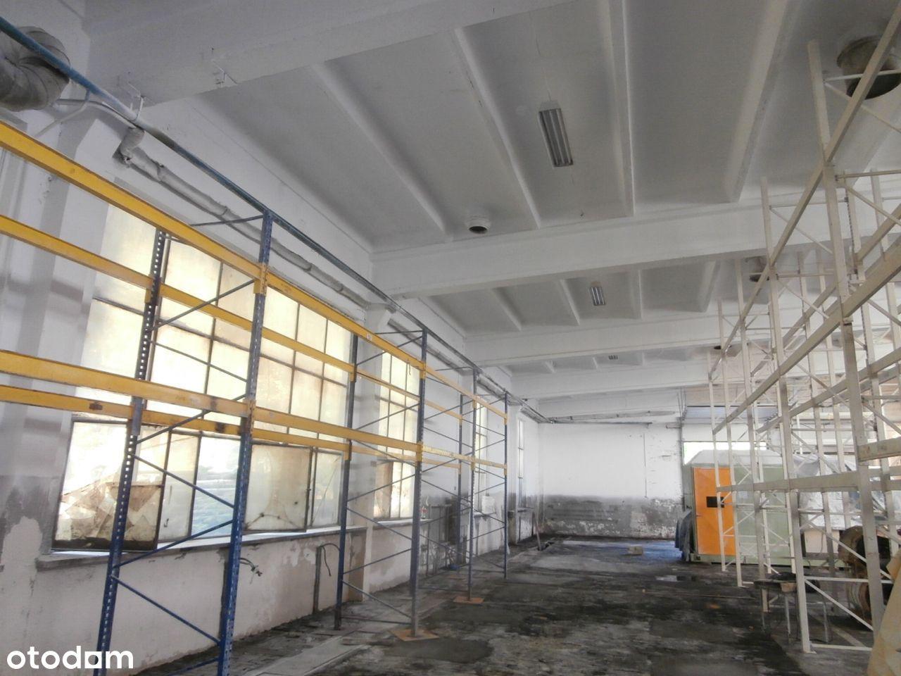 Hala magazynowo - produkcyjna 450 m2 (11.2)