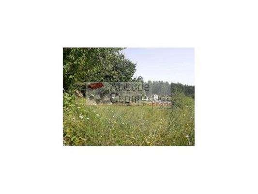 Quintas e herdades para comprar, Alvarenga, Arouca, Aveiro - Foto 11