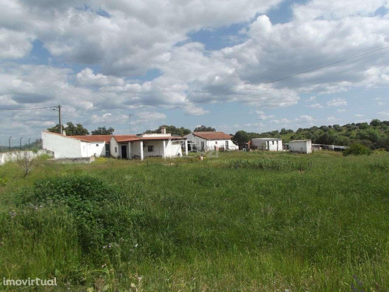 Quintas e herdades para comprar, Vila Nova de São Bento e Vale de Vargo, Serpa, Beja - Foto 2