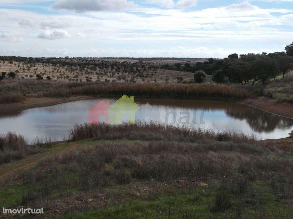 Quintas e herdades para comprar, Albernoa e Trindade, Beja - Foto 12