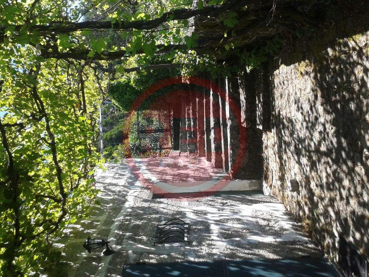 Quintas e herdades para comprar, Rendufinho, Póvoa de Lanhoso, Braga - Foto 10