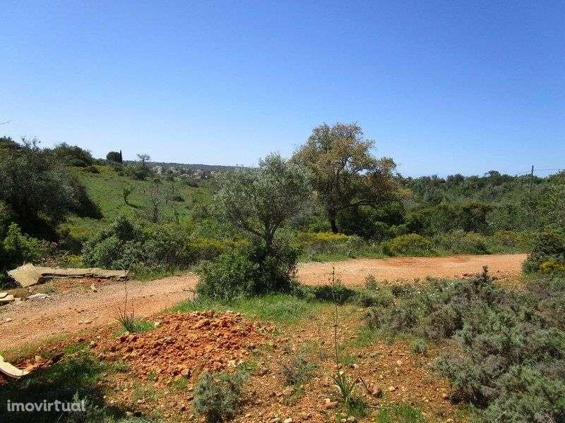 Quintas e herdades para comprar, Estômbar e Parchal, Faro - Foto 4