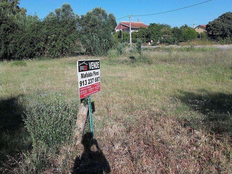 Terreno para comprar, Paialvo, Santarém - Foto 5