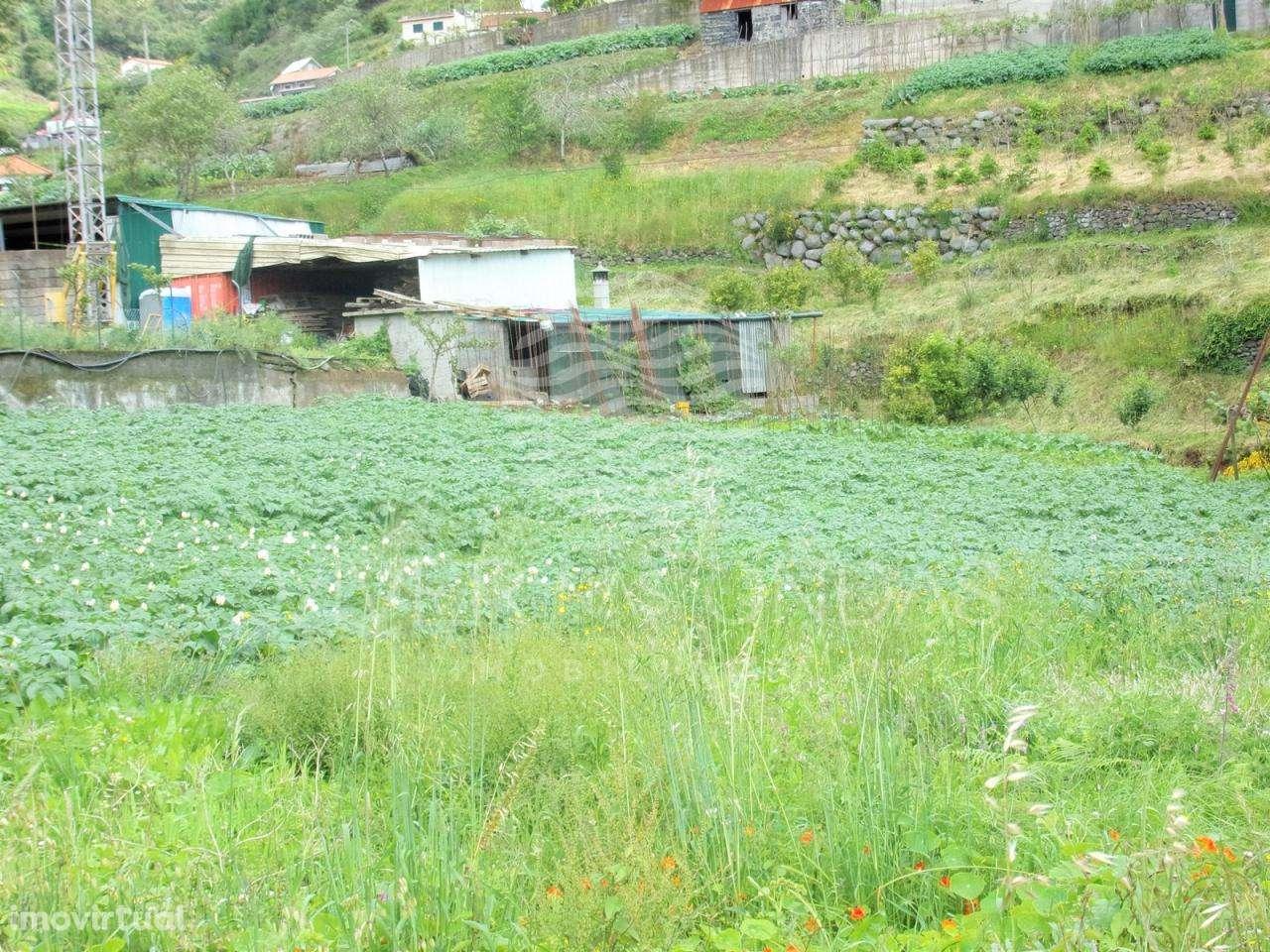 Moradia para comprar, Santo António da Serra, Ilha da Madeira - Foto 48