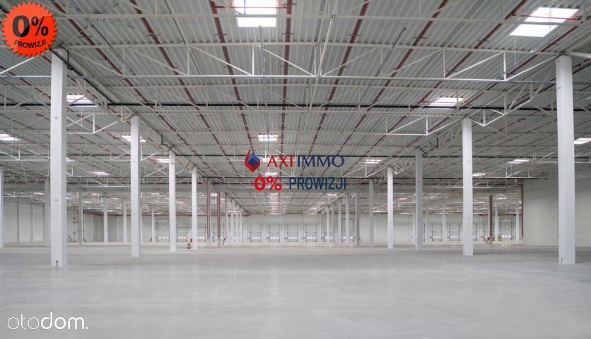 Balice Magazyn 15000 m2 oferta bez prowizji