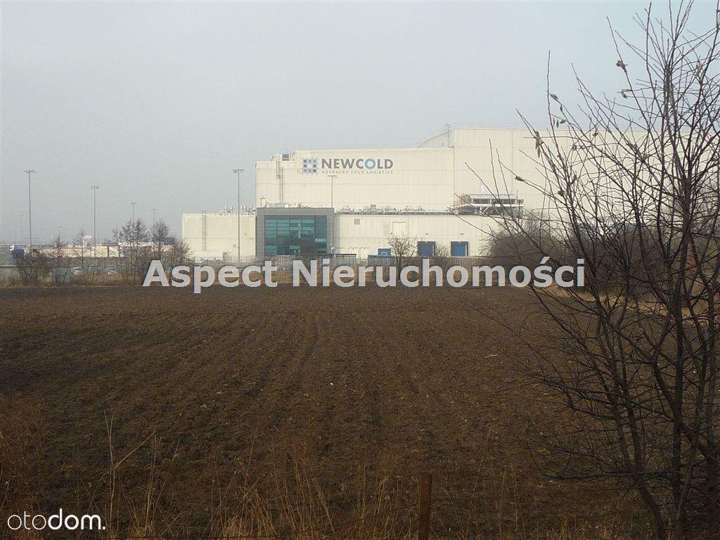 Działka, 28 000 m², Kutno