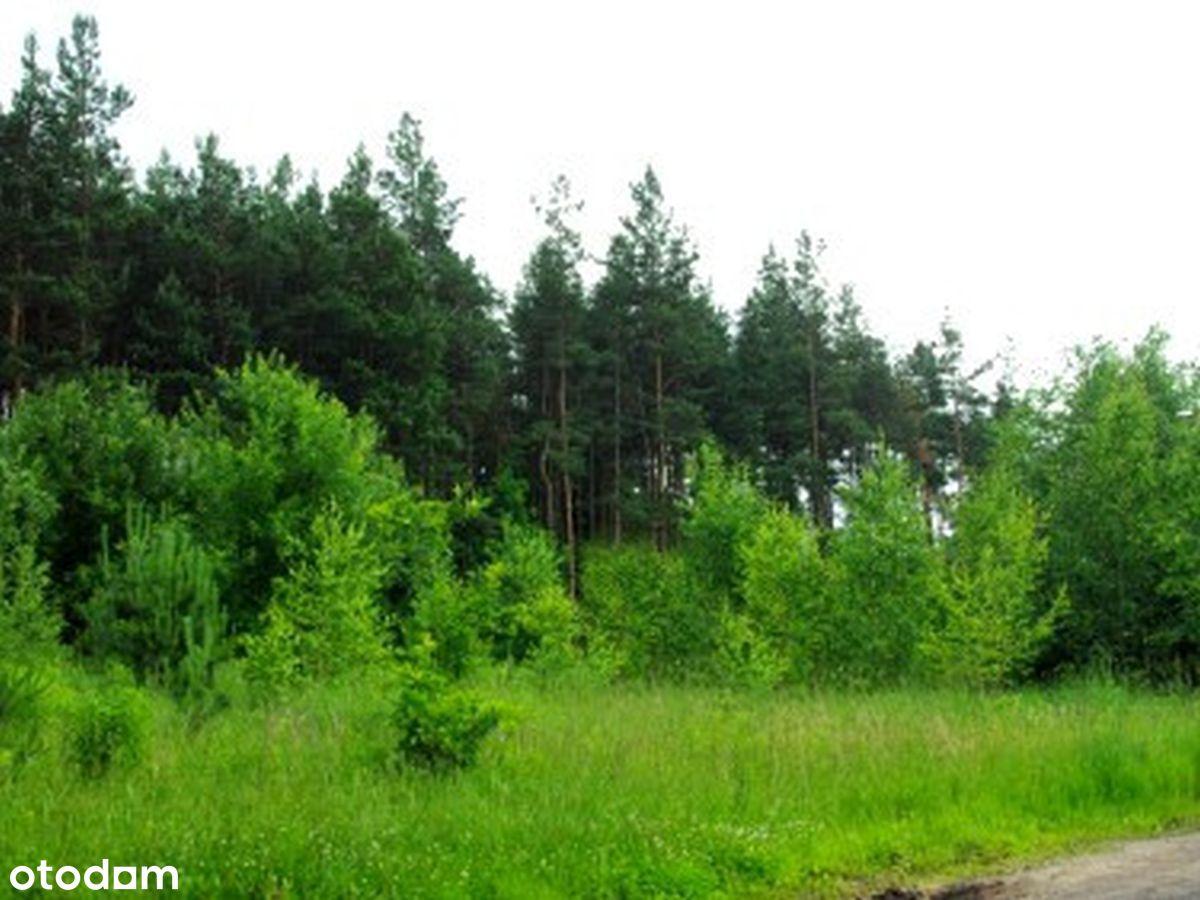 Mielec, Os. Smoczka - działka budowlana przy lesie
