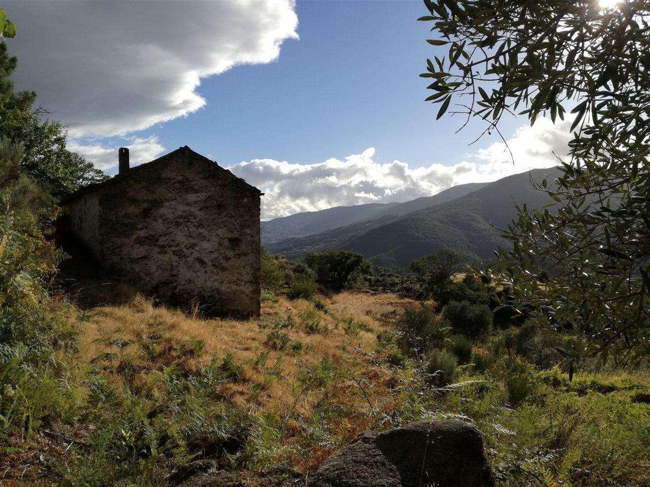 Quintas e herdades para comprar, Teixoso e Sarzedo, Castelo Branco - Foto 5