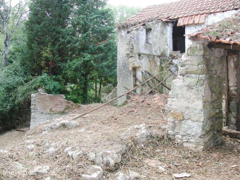 Terreno para comprar, Coz, Alpedriz e Montes, Leiria - Foto 4