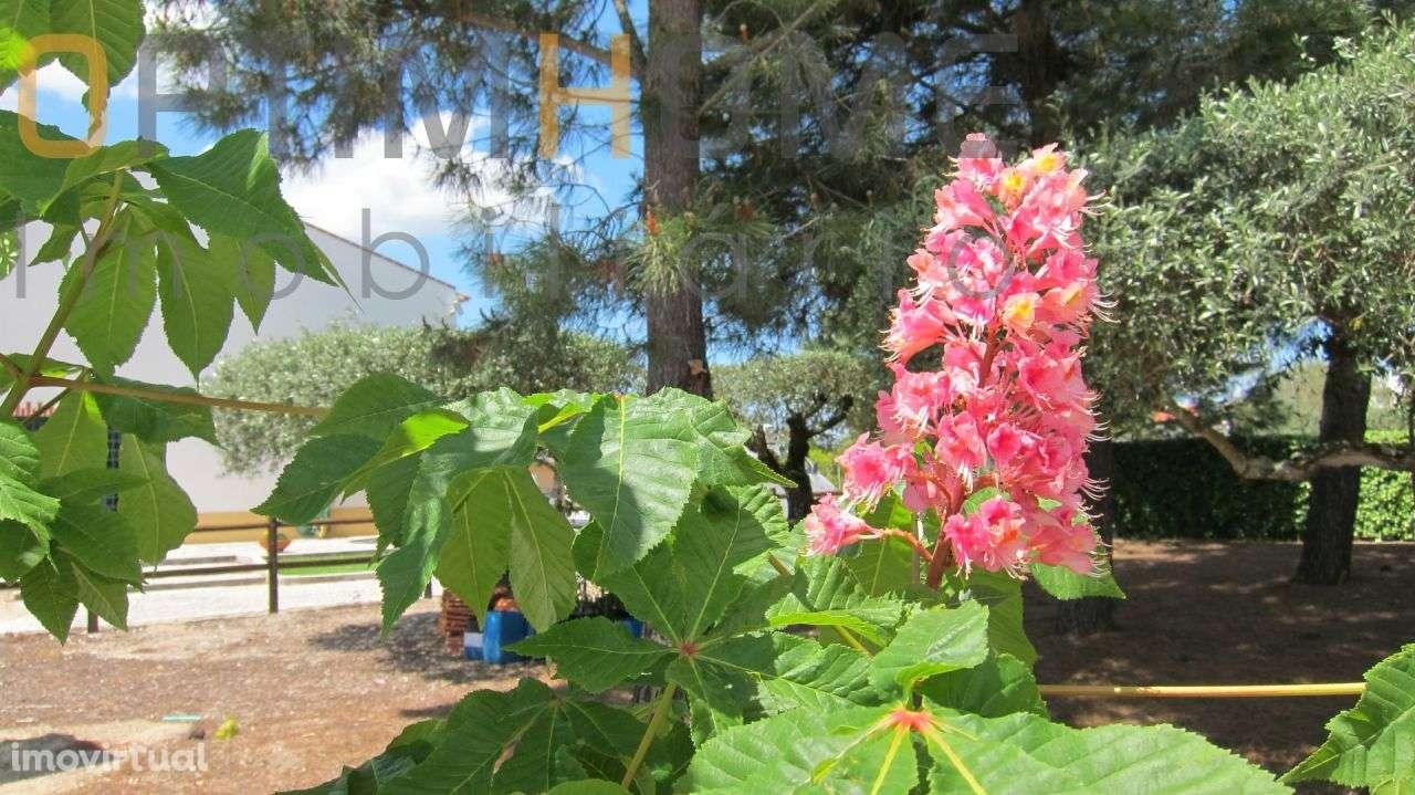 Quintas e herdades para comprar, Vila Chã de Ourique, Santarém - Foto 8