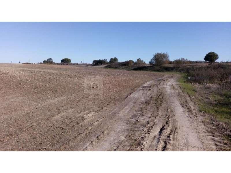 Terreno para comprar, Montijo e Afonsoeiro, Setúbal - Foto 6