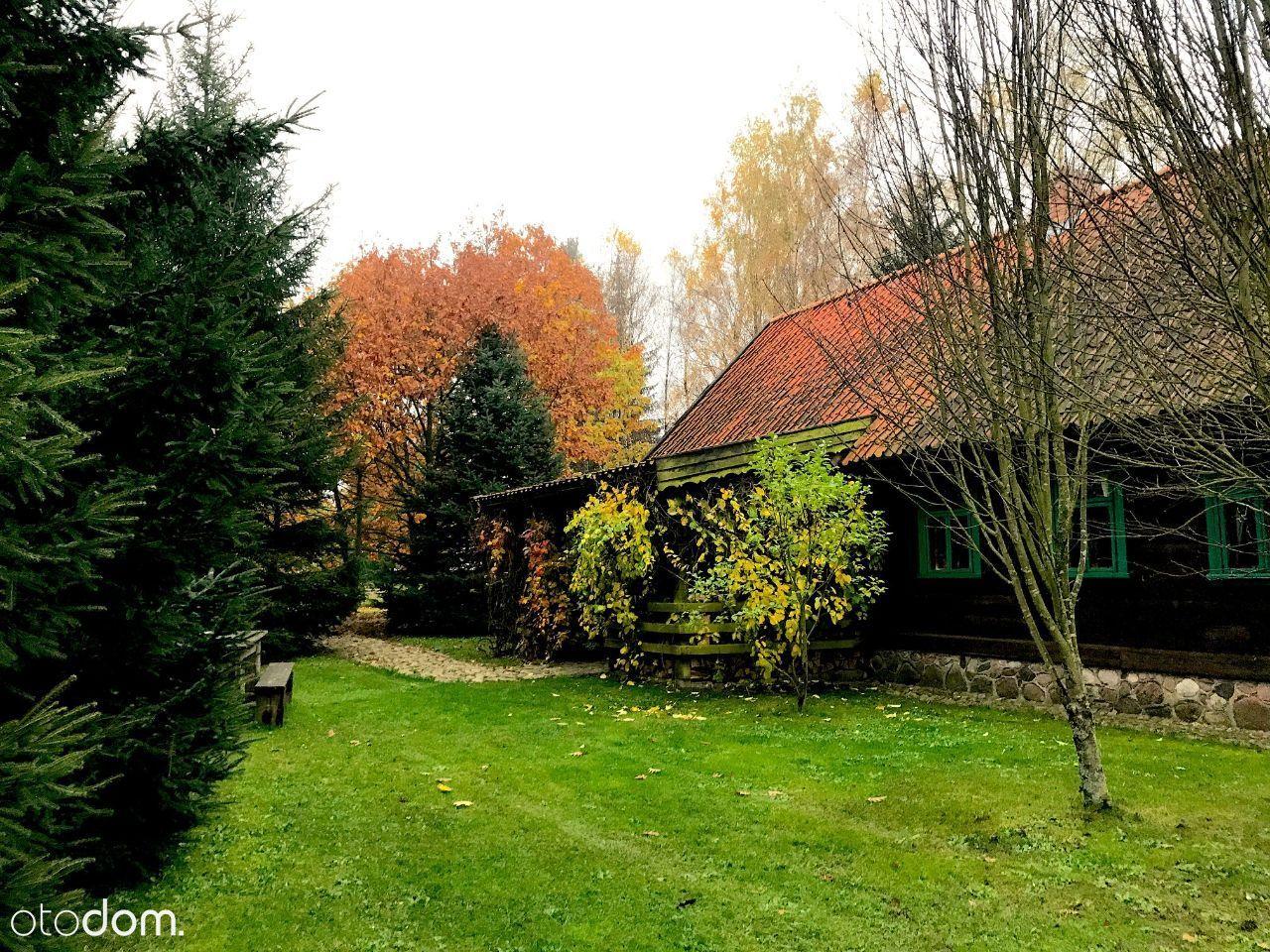 Dom z bala 160 m2, działka 4 000 m2, Siedlisko Ols