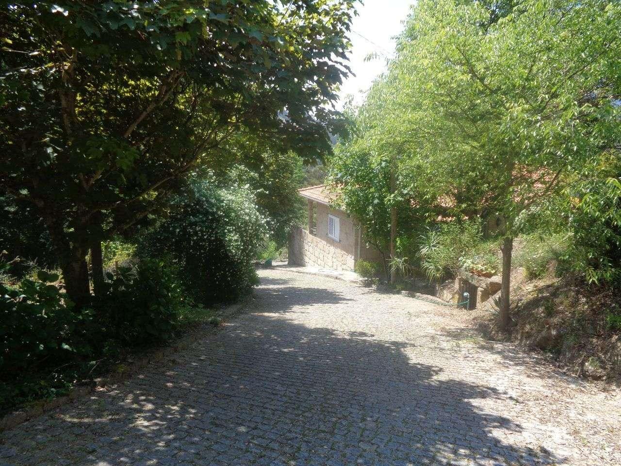 Quintas e herdades para comprar, Anreade e São Romão de Aregos, Viseu - Foto 54